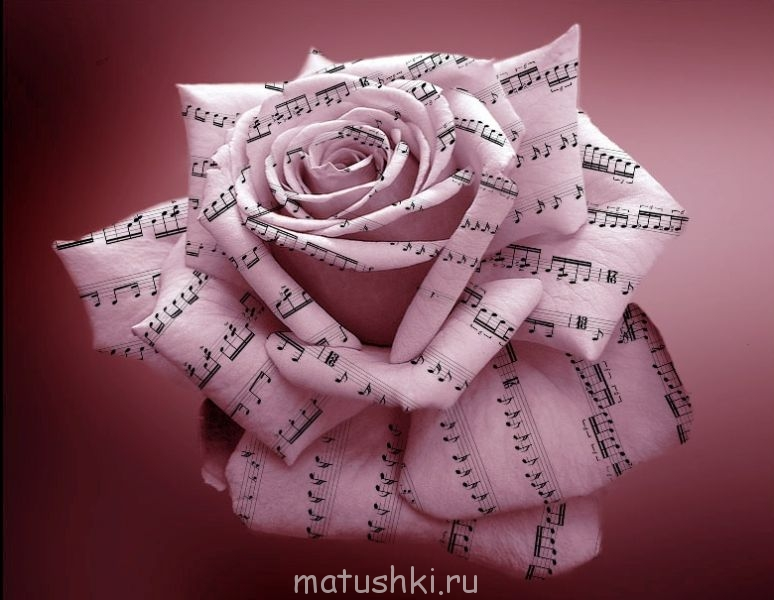 80583089_large_pica4uru_1202330798music_rose_by_donatocamino.jpg